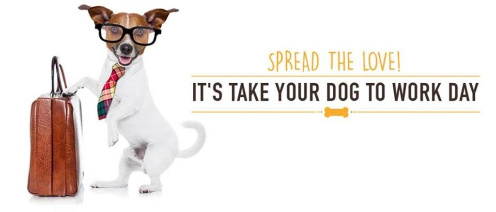 Spread the Love! It's take your dog to work day banner AVT